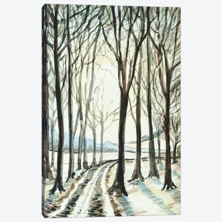 Winter Wood Canvas Print #LSM124} by Luisa Millicent Canvas Print