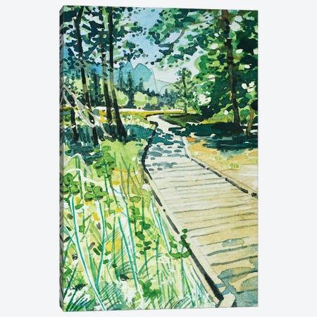 Yosemite Valley Trail Canvas Print #LSM132} by Luisa Millicent Art Print