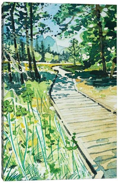 Yosemite Valley Trail Canvas Art Print