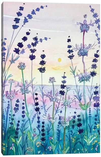 Topanga Seed Heads #2 Canvas Art Print