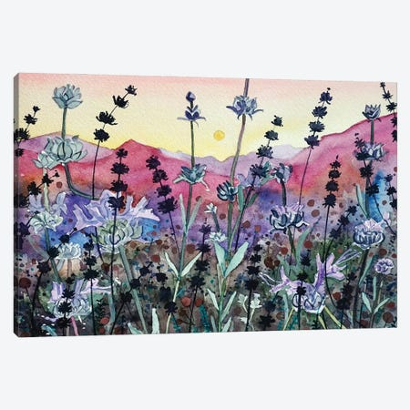 Seed Head Sunset Canvas Print #LSM143} by Luisa Millicent Canvas Wall Art