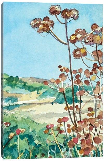 Peter Strauss Seed Heads Canvas Art Print