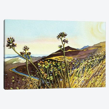 MisheMocka Trail Canvas Print #LSM146} by Luisa Millicent Art Print