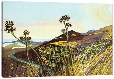 MisheMocka Trail Canvas Art Print
