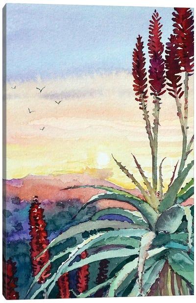 Topanga Sunset #4 Canvas Art Print