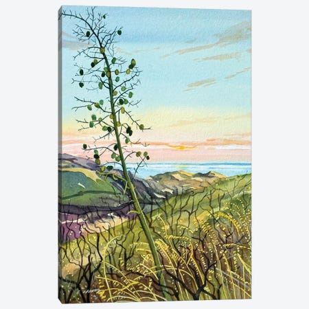 Chaperral Yucca Canvas Print #LSM150} by Luisa Millicent Canvas Print