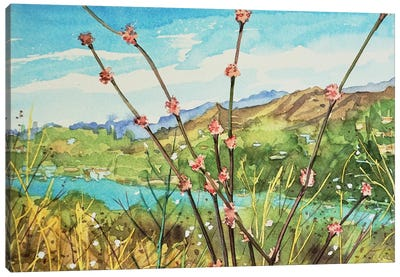 Wand Buckwheat Canvas Art Print