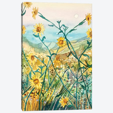 Yellow Daisies Canvas Print #LSM172} by Luisa Millicent Canvas Print