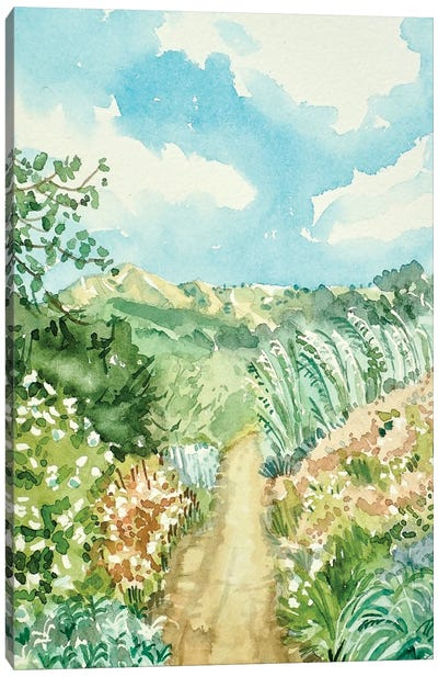 Secluded Path Canvas Art Print