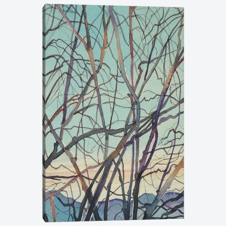 Bare Winter Branches Canvas Print #LSM187} by Luisa Millicent Art Print