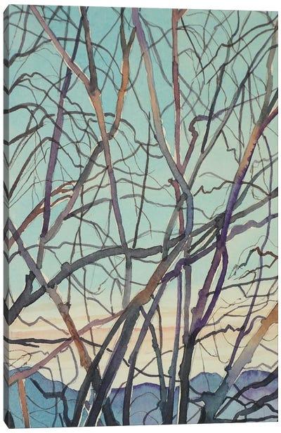 Bare Winter Branches Canvas Art Print