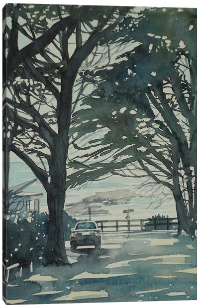 Carmel Monterey Pines Canvas Art Print