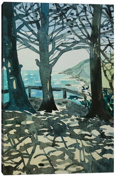Ragged Point Big Sur Canvas Art Print