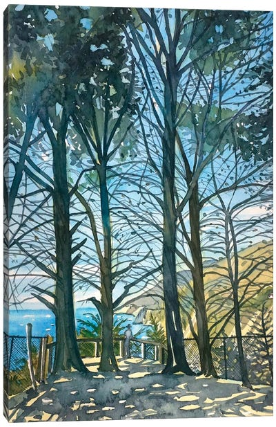 Ragged Point Sunshine Canvas Art Print