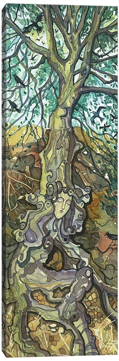 Oak Lady Of Lake Vista Canvas Art Print