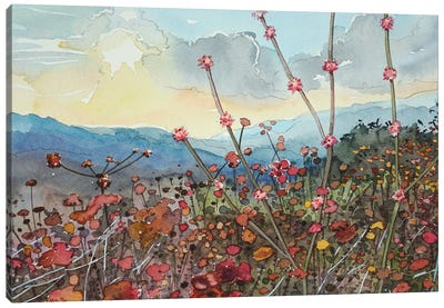 Winter In Tuna Canyon Canvas Art Print