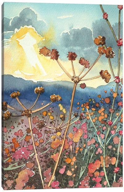 Winter Seed Heads In Tuna Canyon Canvas Art Print