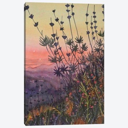 Warm Topanga Sunset Canvas Print #LSM225} by Luisa Millicent Canvas Art