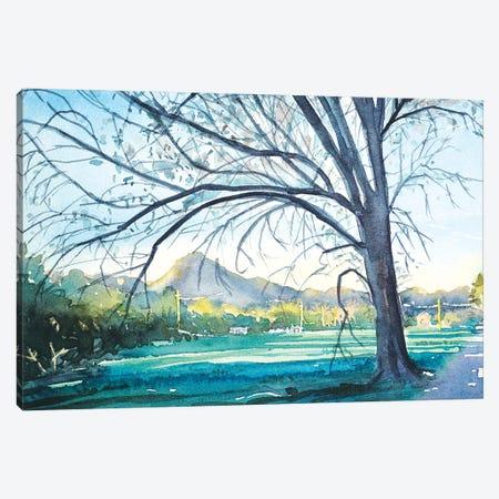Dappled Afternoon Light - Reagan Ranch Canvas Print #LSM37} by Luisa Millicent Canvas Artwork