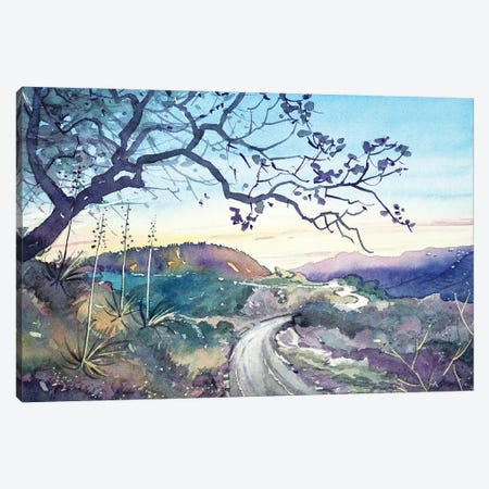 Fading Light On The Trail - Topanga Canvas Print #LSM42} by Luisa Millicent Canvas Wall Art