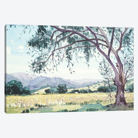 Malibu Creek From King Gillette Ranch Canvas Print #LSM50} by Luisa Millicent Canvas Art Print