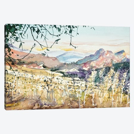 Malibu Creek - Dusk Canvas Print #LSM53} by Luisa Millicent Canvas Print