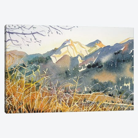Golden Hour - Malibu Creek Canvas Print #LSM58} by Luisa Millicent Art Print