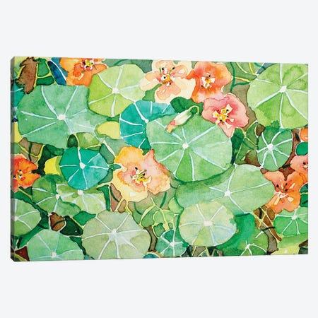 Kelly'S Nasturtiums 3-Piece Canvas #LSM61} by Luisa Millicent Canvas Art