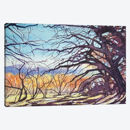 Old Oaks - Paramount Trail 3-Piece Canvas #LSM67} by Luisa Millicent Canvas Print