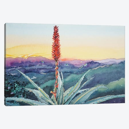 Red Hot Poker Sunset - Topanga Canvas Print #LSM71} by Luisa Millicent Canvas Print