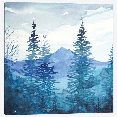 Winter - Santa Monica Mountains Canvas Print #LSM91} by Luisa Millicent Canvas Print