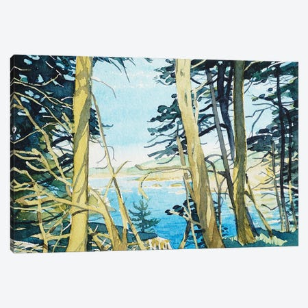 Through The Trees At Point Lobos Canvas Print #LSM93} by Luisa Millicent Canvas Art Print