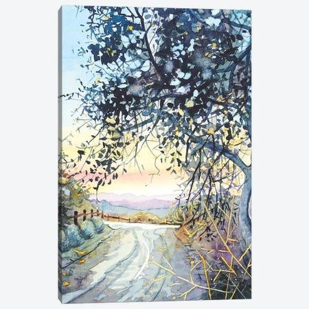 Topanga Trail Canvas Print #LSM97} by Luisa Millicent Canvas Artwork