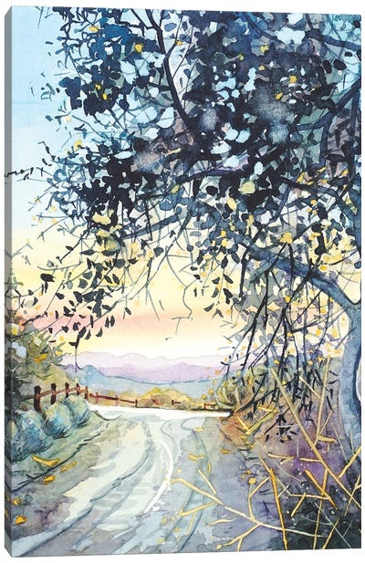 Topanga Trail Canvas Art Print