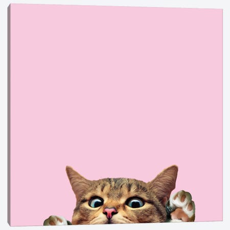 Bye Cat Canvas Print #LSN2} by Lostanaw Canvas Artwork