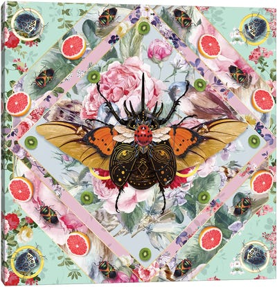 King Of Insects III Canvas Art Print