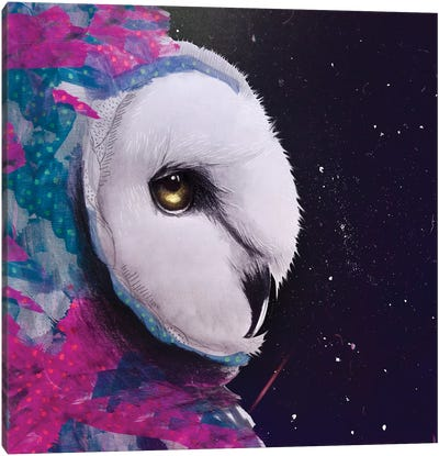 Owl Watercolor Tapices Canvas Art Print