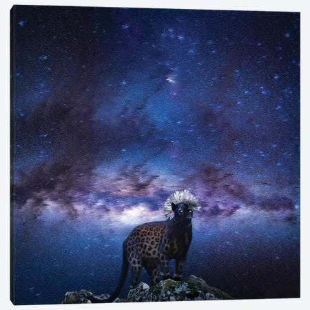 Punk Panther Slin Leopard 3-Piece Canvas #LSN44} by Lostanaw Canvas Wall Art