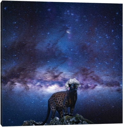 Punk Panther Slin Leopard Canvas Art Print