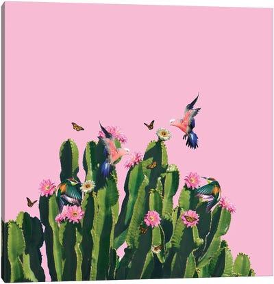 The Succulent Cactus Canvas Art Print