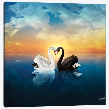 Cisnes Love Canvas Print #LSN8} by Lostanaw Canvas Art