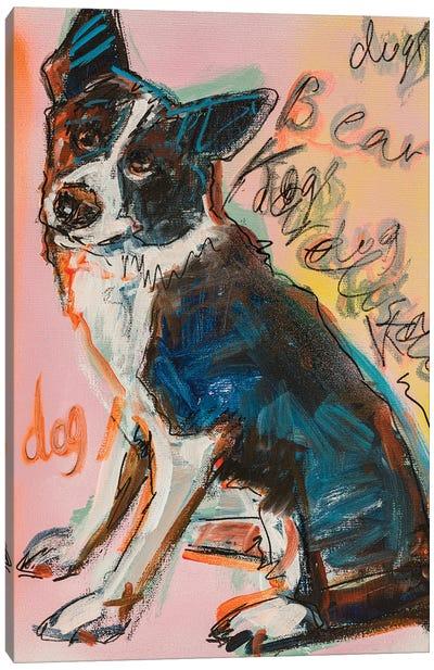 Karelian Bear Dog Canvas Art Print