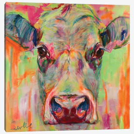 Cow Portrait XII Canvas Print #LSR14} by Liesbeth Serlie Canvas Art Print