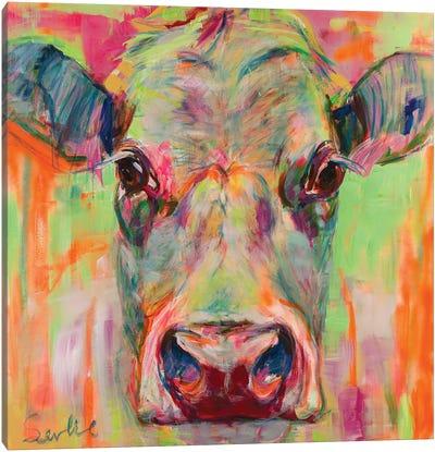 Cow Portrait XII Canvas Art Print