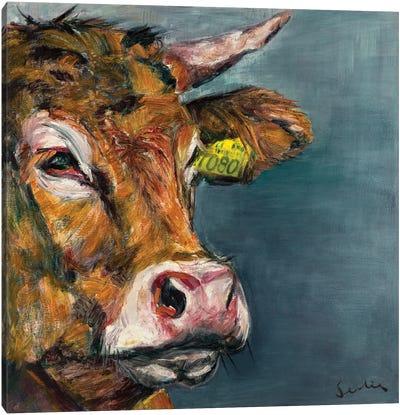 Cow V Canvas Art Print