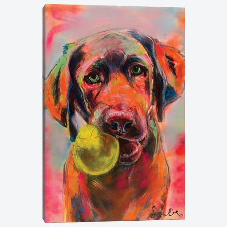 Labrador Portrait Canvas Print #LSR17} by Liesbeth Serlie Art Print