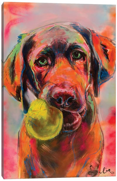 Labrador Portrait Canvas Art Print
