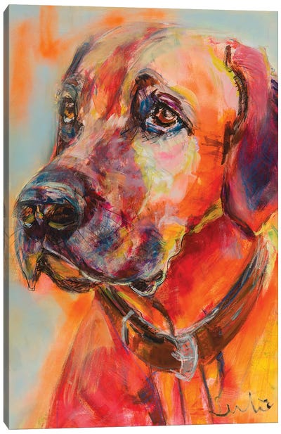 Rhodesian Ridgeback Portrait Canvas Art Print