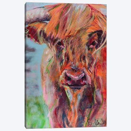 Scottish Highlander Canvas Print #LSR21} by Liesbeth Serlie Canvas Print