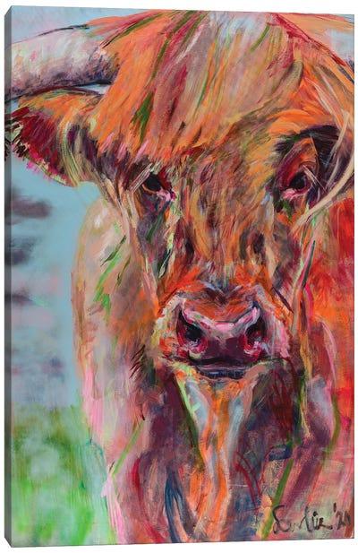 Scottish Highlander Canvas Art Print